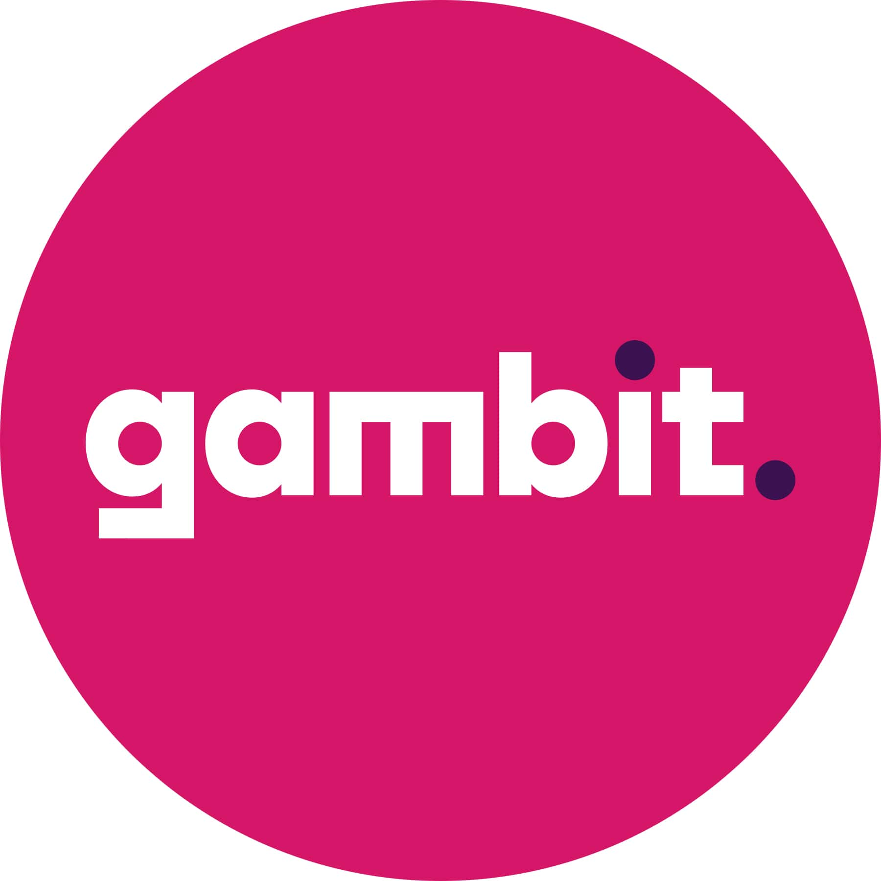 meet-gambit-a-new-addition