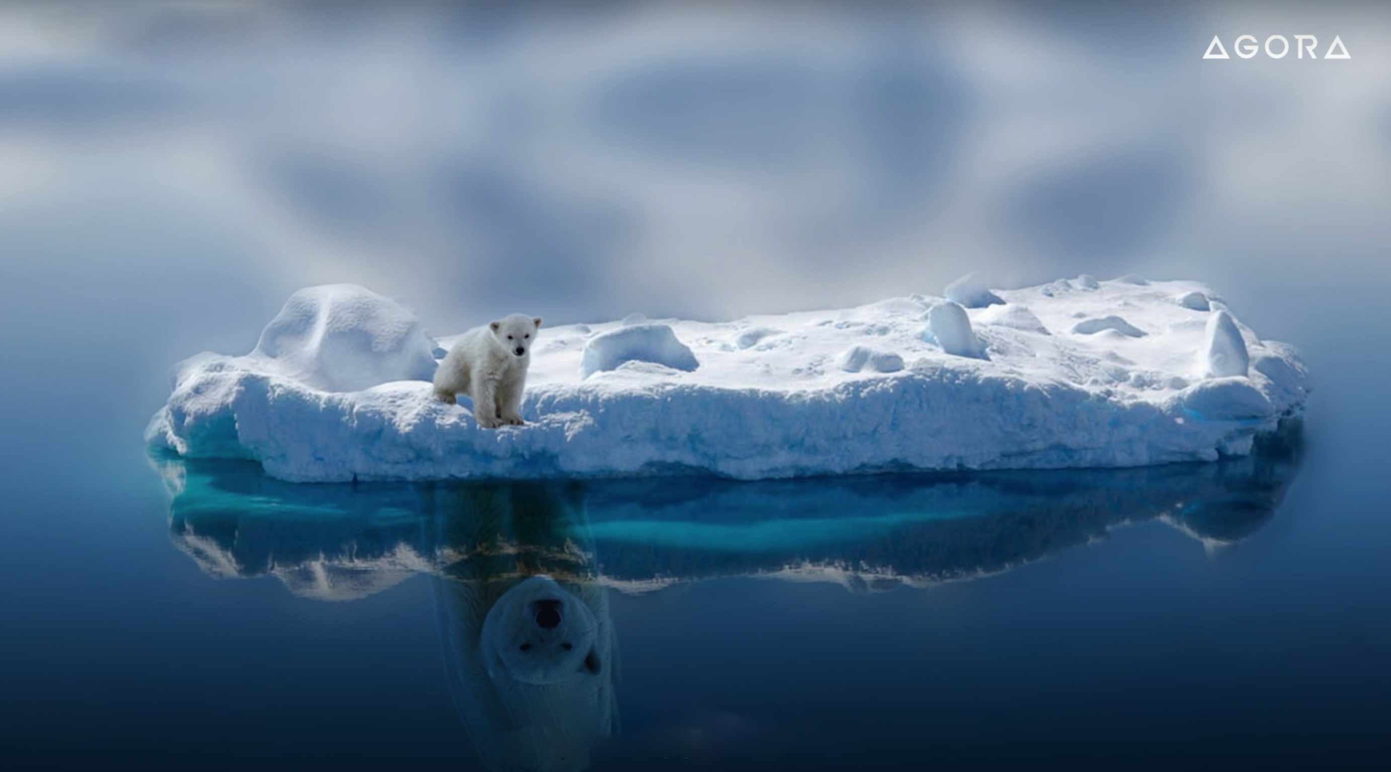 agora-images-global-warming-through-the-eyes-of-paal-uglefisk