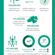 Arabic Web Days 2013 - Infographic 12.14.25 PM